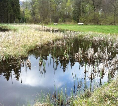 33W16-Frau-Holle-Teich