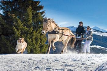 """Les Gets – """"Perle"""" der französischen Alpen"""