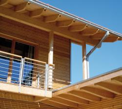 Fichte: das Holz der Nachhaltigkeit
