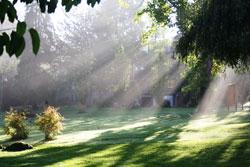 Erholungsziel Licht