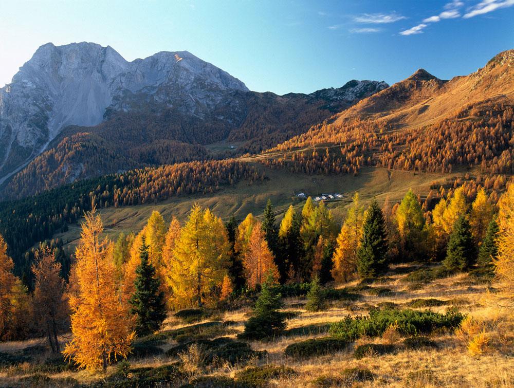 Albergo diffuso im Bergwald