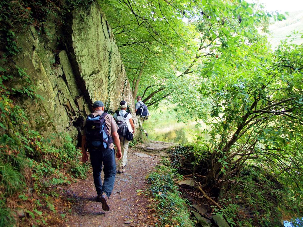 Fasten-Wandern am Rheinsteig