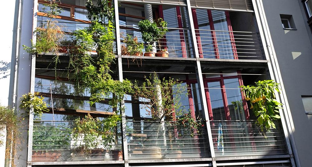 Vom Balkon- zum Landschaftsgärtnern