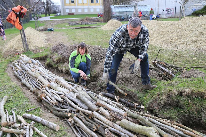 Gemeinschaftsgärten: Wo Sie mitmachen können