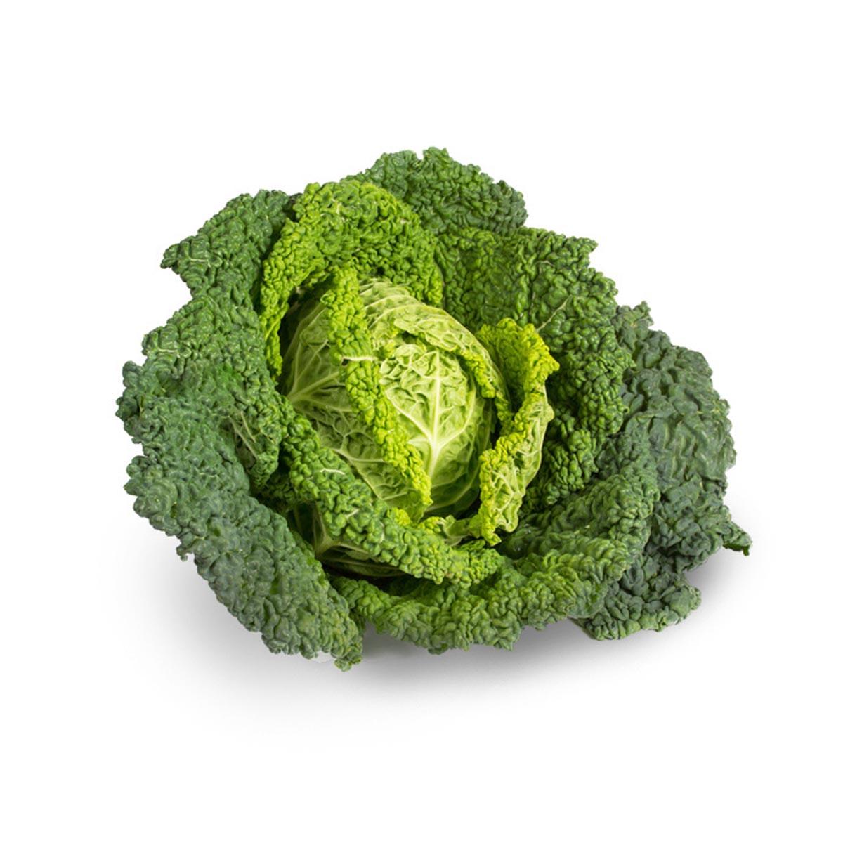 Fokus auf heimisches Obst und Gemüse