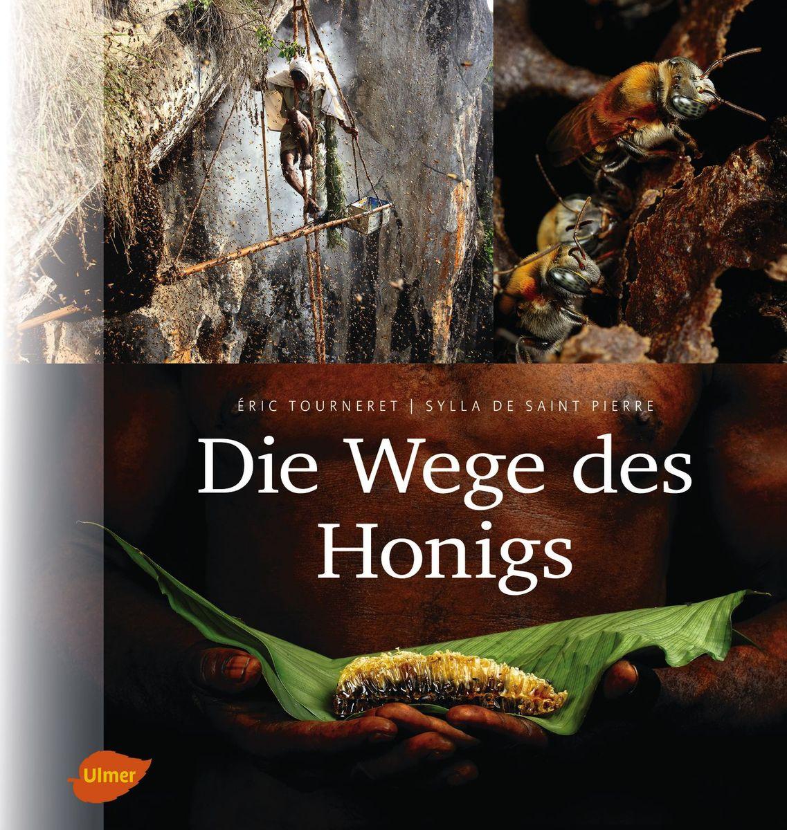 Buch-Tipp: Die Wege des Honigs