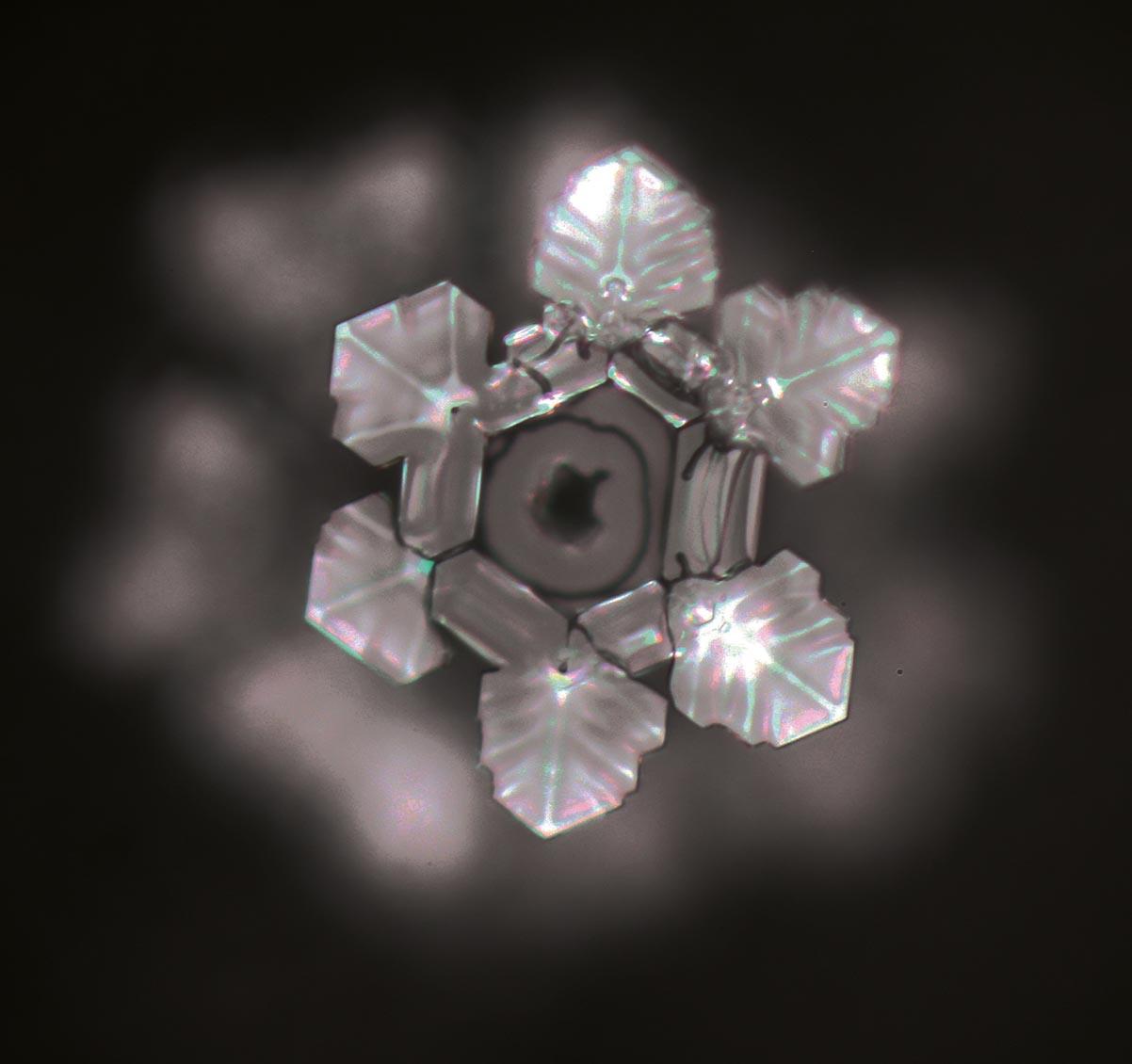 Kristallbilder nach der Emoto-Methode