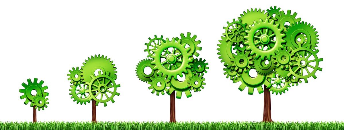 Grüne Wirtschaft