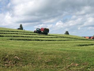 """EU-Parlament stimmt für """"Farm to Fork""""- Strategie"""